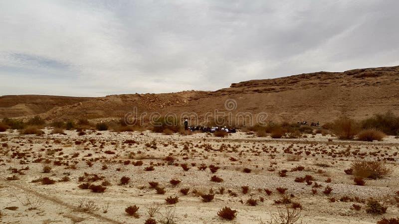 deserto della natura del paesaggio della terra della foto dell'aria fresca fotografia stock libera da diritti