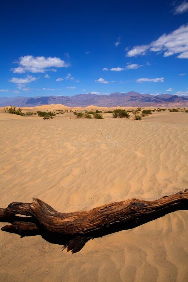 Deserto delle dune del Mesquite nel parco nazionale di Death Valley immagini stock