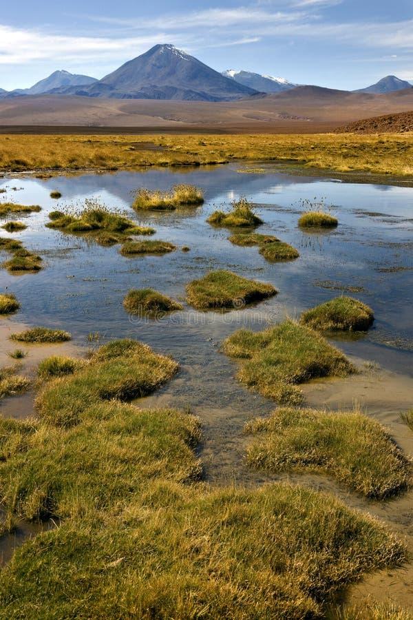 Deserto di Atacama - Cile fotografie stock