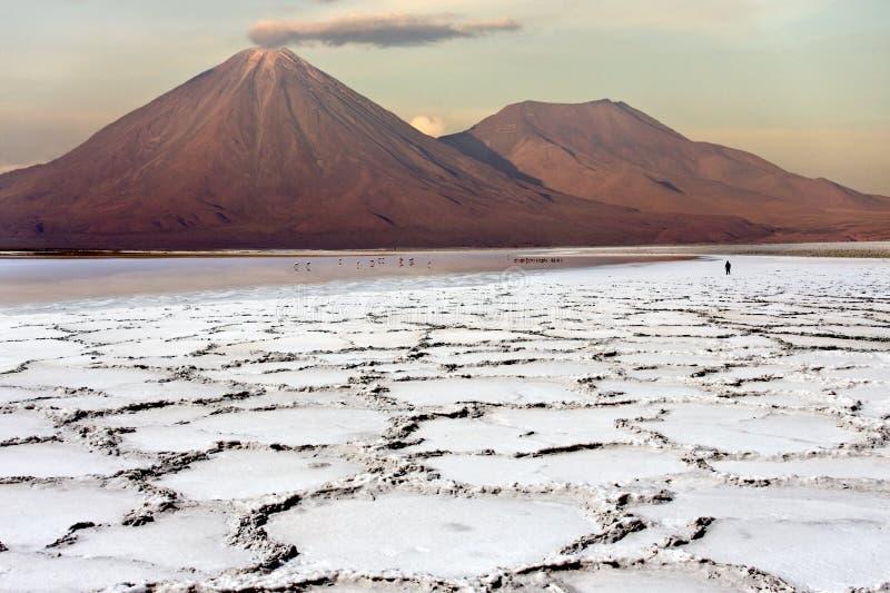 Deserto di Atacama nel Cile fotografia stock libera da diritti