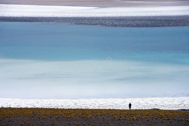 Deserto di Atacama nel Cile del Nord fotografia stock