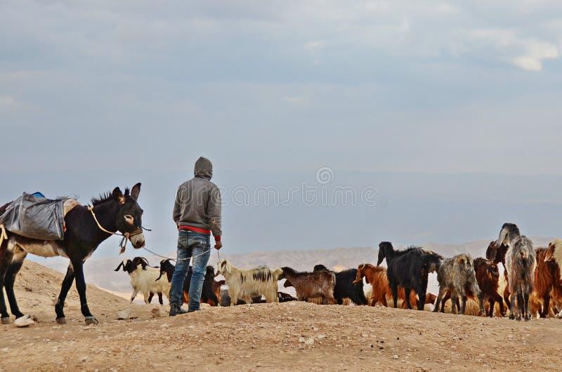 Deserto di Judaean immagine stock libera da diritti