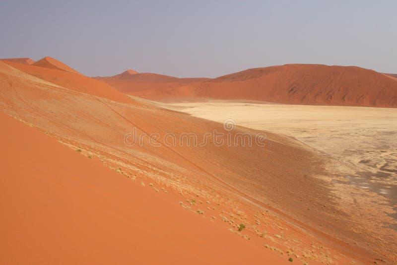 Download Deserto di Namib immagine stock. Immagine di deserted - 7302389
