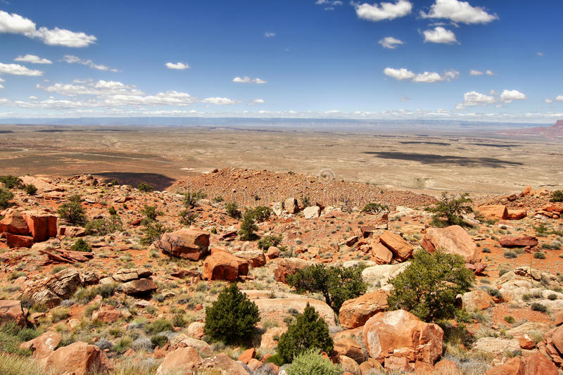 Deserto di pietra in Arizona immagine stock