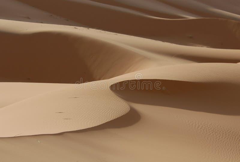 Deserto di Sahara immagine stock libera da diritti