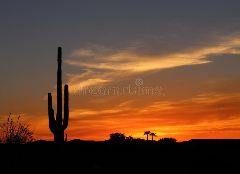 Deserto di sud-ovest al tramonto fotografia stock