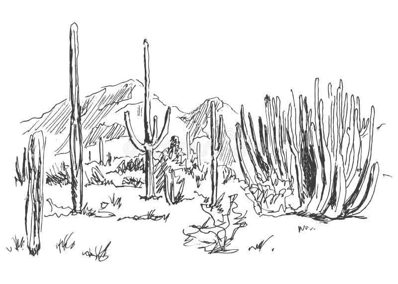 Deserto do americano do esboço da mão ilustração do vetor