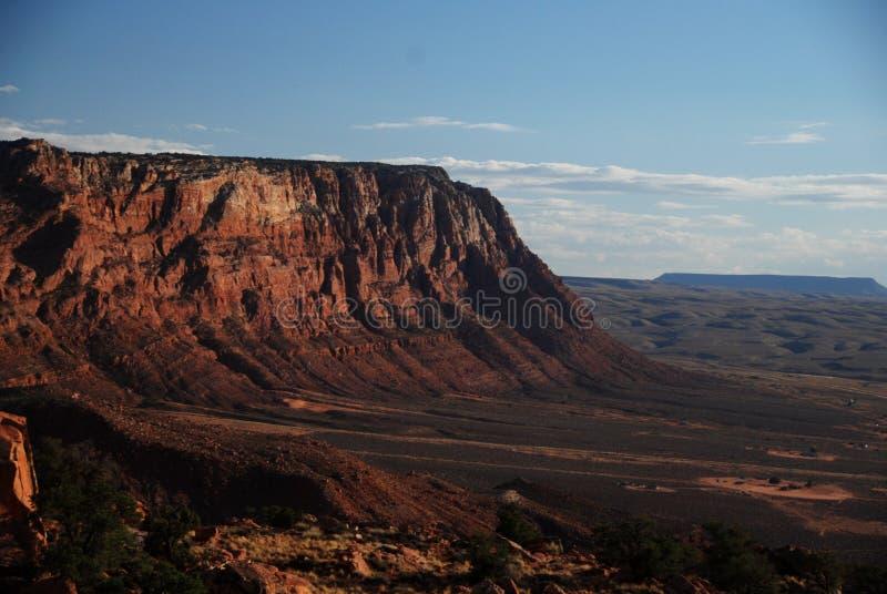Deserto do Arizona fotos de stock