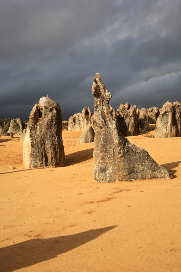 Deserto dos pináculos, Austrália Ocidental imagem de stock