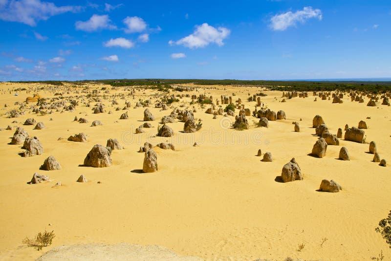 Deserto dos pináculos na Austrália Ocidental imagens de stock royalty free