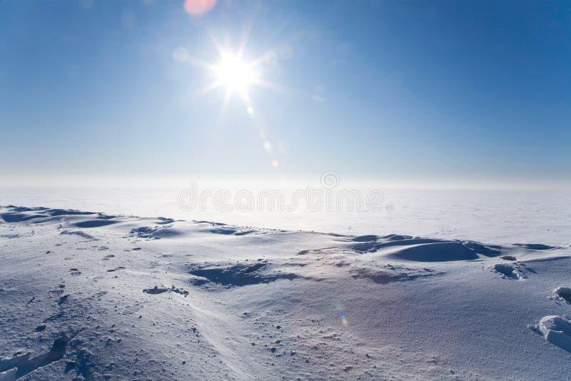 Deserto ghiacciato immagine stock