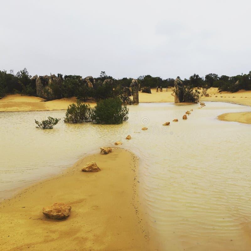 Deserto inundado foto de stock