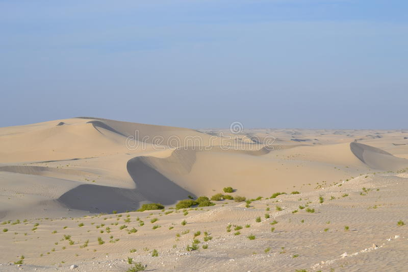 Deserto largo fotos de stock