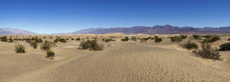 Deserto liso das dunas de areia do Mesquite em Death Valley fotografia de stock