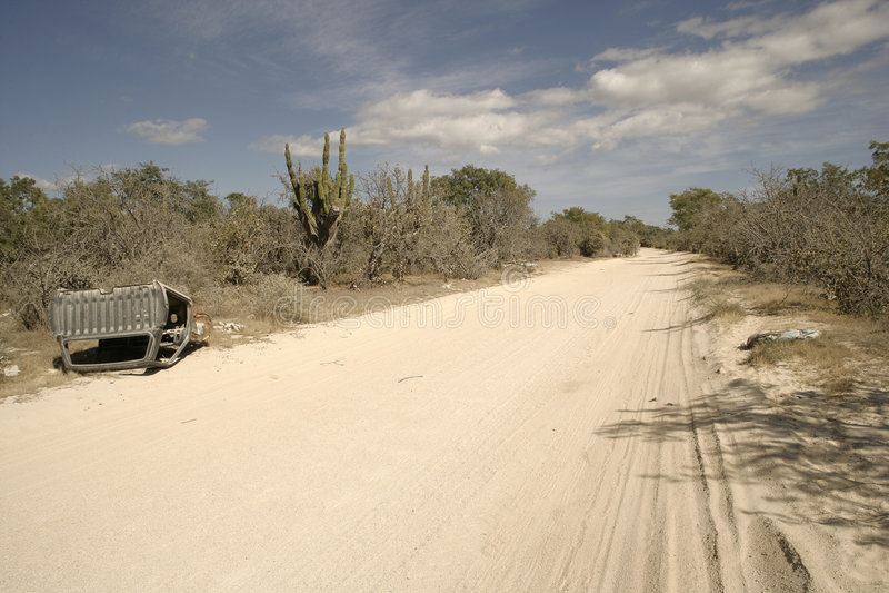 Deserto mexicano imagens de stock