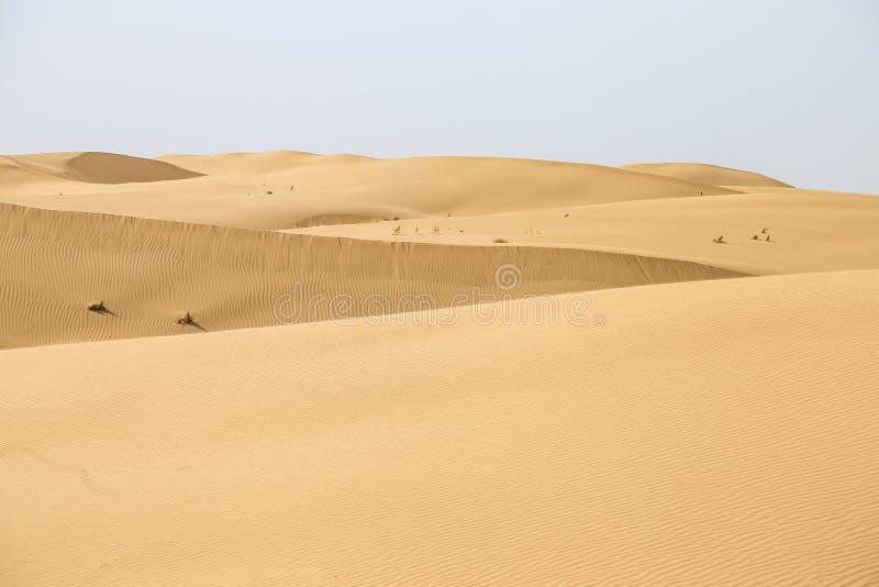 Deserto Mongolia Interna, Cina, deserto di Kubuqi fotografia stock