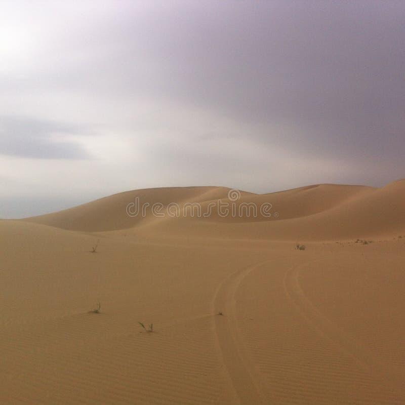 Deserto nel Inner Mongolia immagine stock libera da diritti
