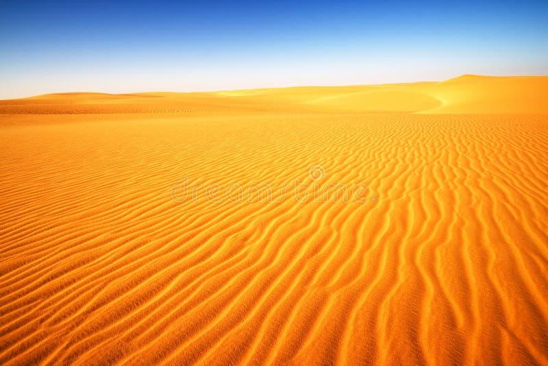 Deserto nell'Egitto, Africa fotografie stock libere da diritti