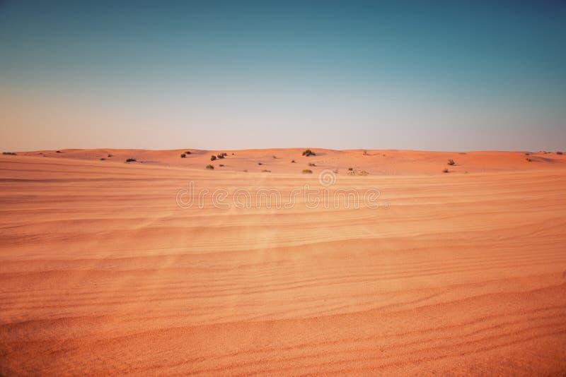 Deserto no por do sol fotografia de stock