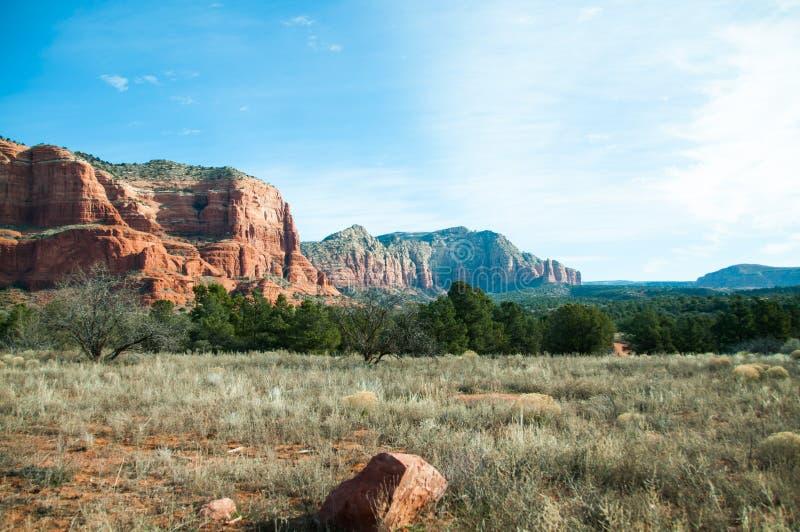 Deserto perto de Phoenix, o Arizona imagem de stock royalty free