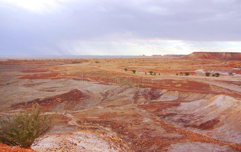 Deserto pintado durante uma tempestade da chuva fotografia de stock royalty free