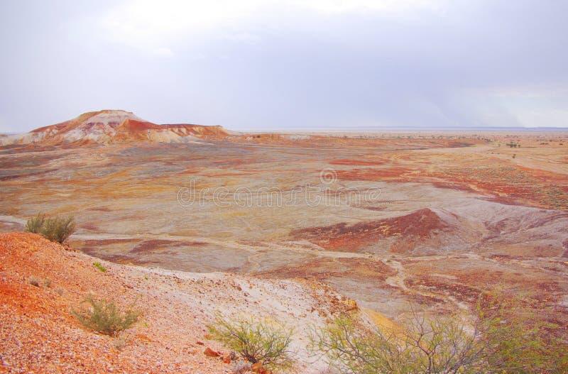 Deserto pintado durante uma tempestade da chuva imagem de stock royalty free