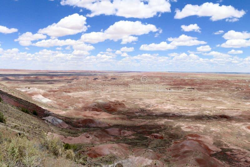 Deserto pintado no Arizona EUA - 1 fotografia de stock