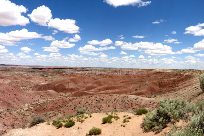 Deserto pintado no Arizona EUA - 2 imagem de stock