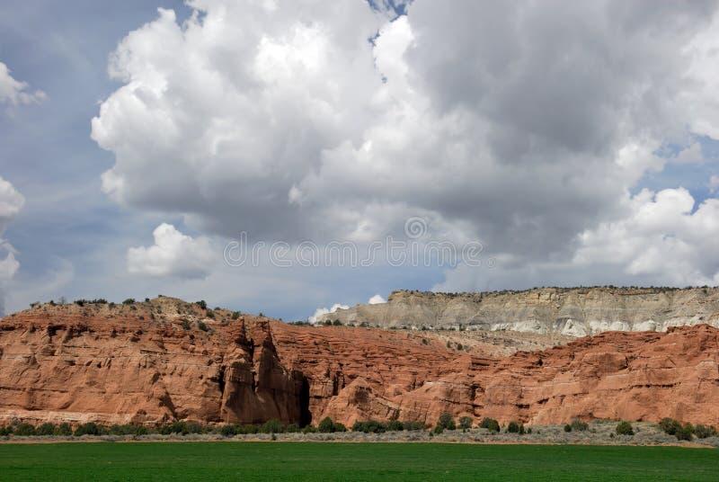 Deserto que cultiva 2 fotos de stock