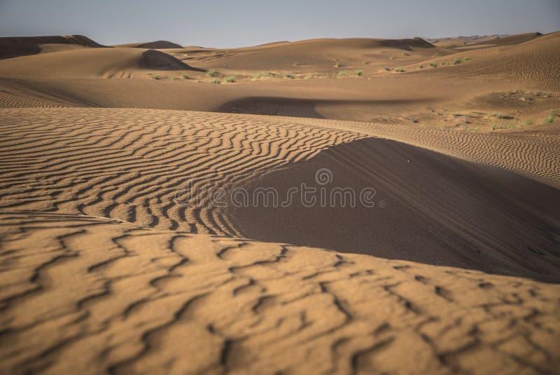 Deserto Safari Dubai fotos de stock royalty free
