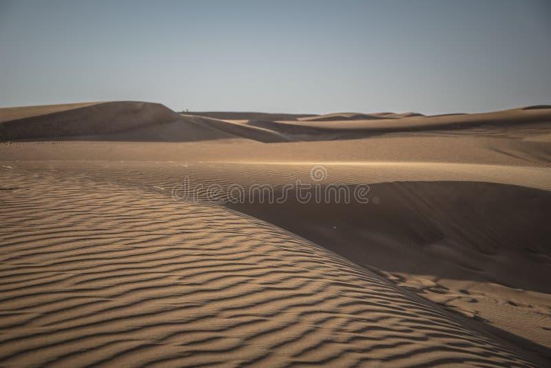 Deserto Safari Dubai foto de stock