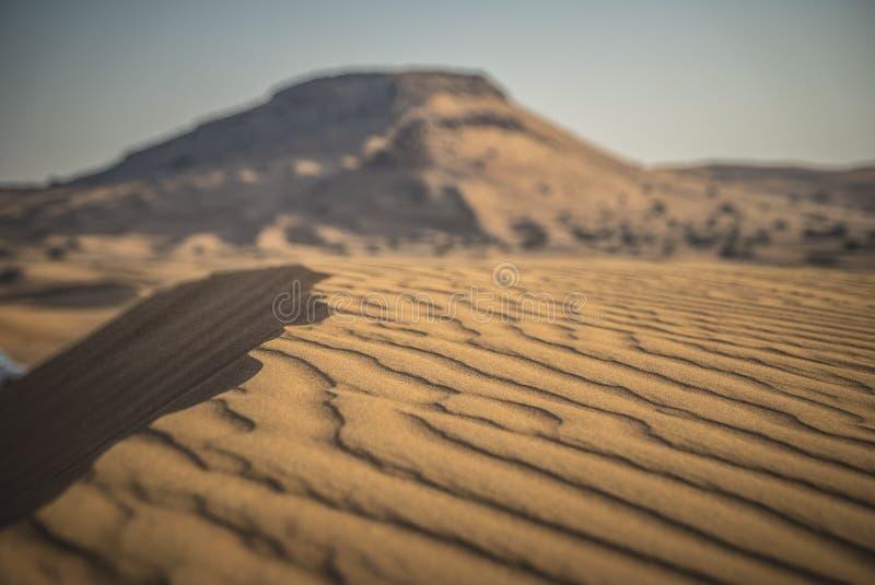 Deserto Safari Dubai imagem de stock
