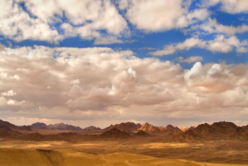 Deserto Sinai. imagem de stock royalty free
