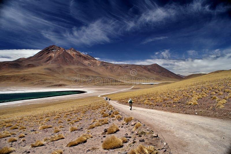 Deserto van Tramonto nel stock afbeeldingen
