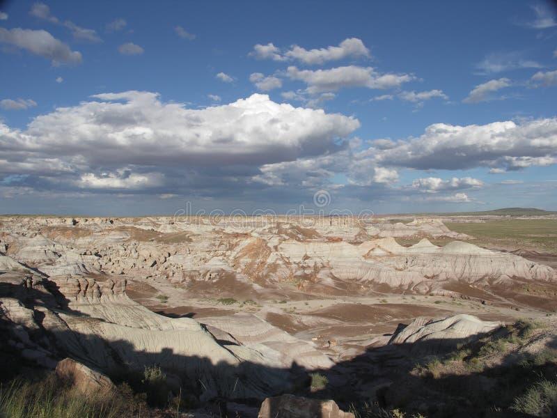 Deserto verniciato immagini stock libere da diritti
