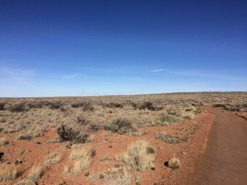 Deserto verniciato, Arizona immagini stock libere da diritti