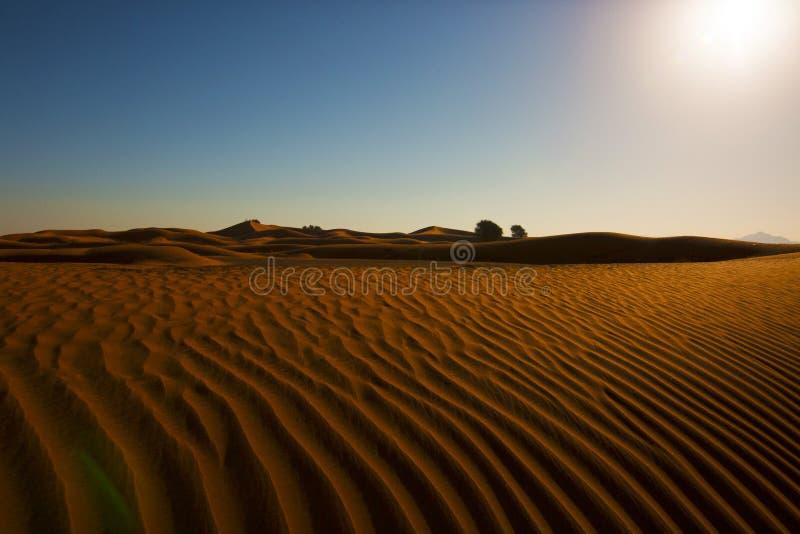 Desertscape rasgó fotos de archivo libres de regalías