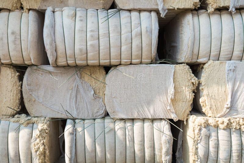 Desfibradoras de algodón foto de archivo libre de regalías