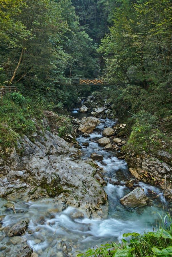 Desfiladeiro bonito de Tolmin na parte eslovena de Julian Alps fotografia de stock royalty free