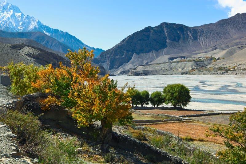 Desfiladeiro de Kali Gandaki imagem de stock royalty free