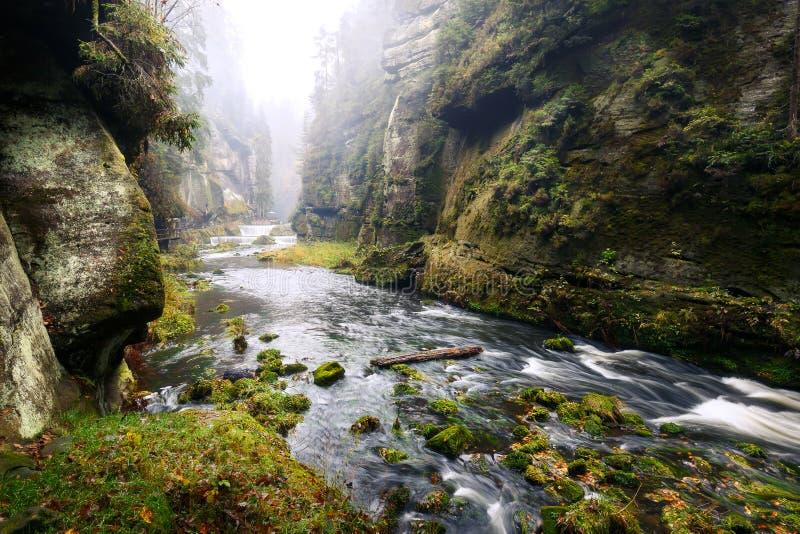 Desfiladeiro de Kamnitz no parque nacional saxão de switzerland imagens de stock