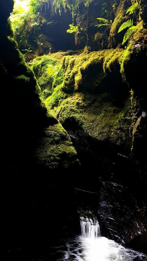 Desfiladeiro de Lydford, Dartmoor Devon imagem de stock royalty free