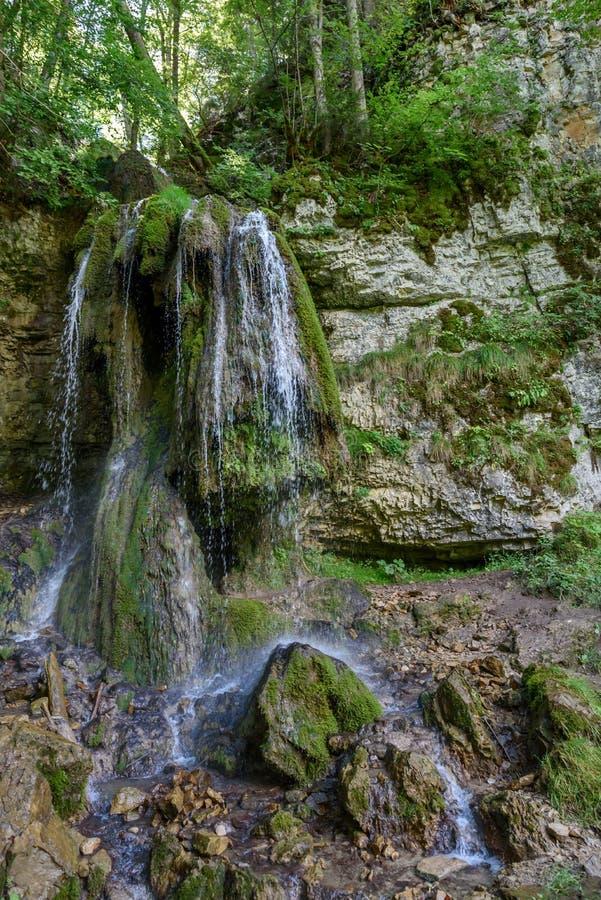 Desfiladeiro de Wutach com rio e cachoeiras - andando na paisagem bonita do mais blackforest, Alemanha foto de stock royalty free