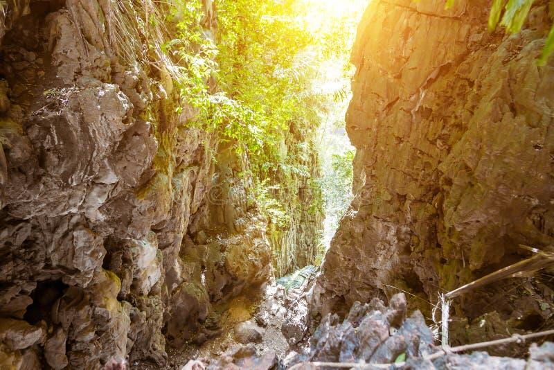 Desfiladeiro nas montanhas tropicais Selva, acesso ? lagoa sobre os penhascos da pen?nsula de Railay Dia ensolarado imagens de stock royalty free