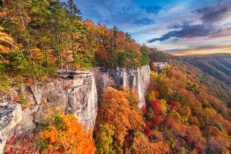 Desfiladeiro novo do rio, Virgnia ocidental, manhã do outono dos EUA imagem de stock royalty free