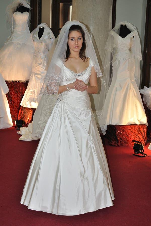 Desfile de moda do casamento imagem de stock royalty free