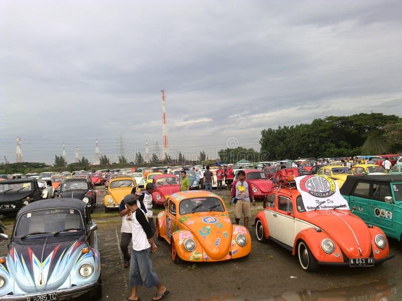Desfile del escarabajo fotografía de archivo libre de regalías
