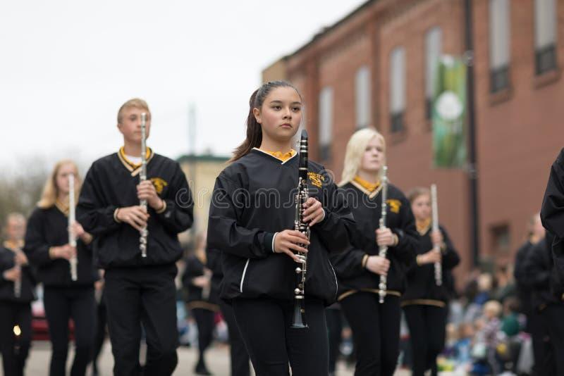 Desfile Holanda 2018 de Muziek imagen de archivo libre de regalías