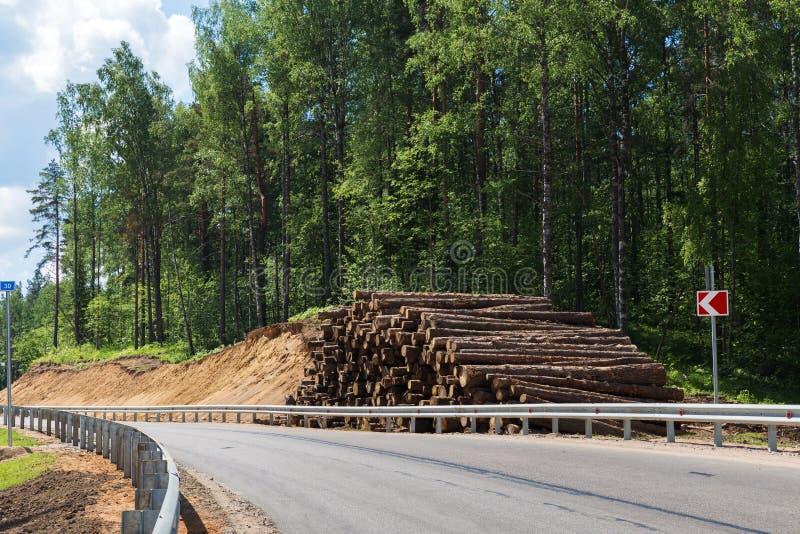 Desflorestamento das árvores de floresta para a construção da cidade nova imagens de stock