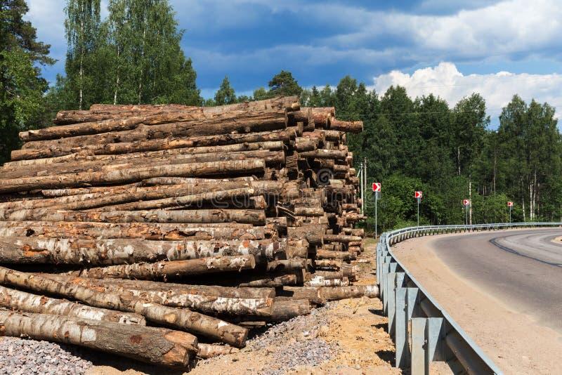 Desflorestamento das árvores de floresta para a construção da cidade nova foto de stock